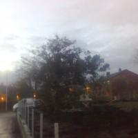 Breiflåtveien (17)