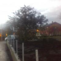 Breiflåtveien (18)